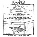 shark61