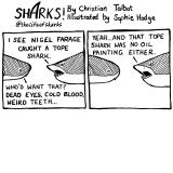 shark70