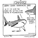 shark74
